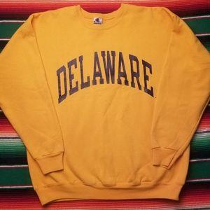 Vintage Delaware Champion sweatshirt.